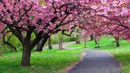 Szokatlanul meleg, kora nyárias idővel indít az április!