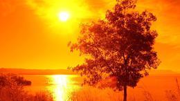 Szubtrópusi eredetű, meleg levegő alakítja időjárásunkat!
