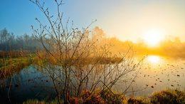 Napsütés és köd párharca