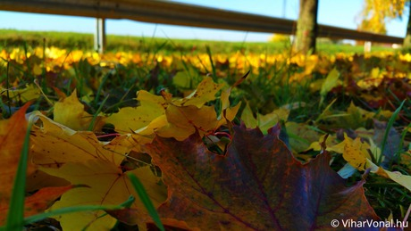 Viharvadászok az ősz nyomában