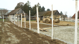 Terápiás lovasközpont épül Szentlászlón