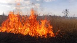 Szabadtéri tüzek okoztak fejfájást a tűzoltóknak