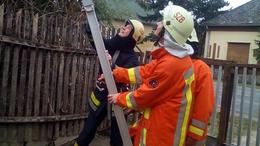 Macska a pácban: bevetésen a szentbalázsi tűzoltók