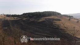 Több hektáron égett az avar