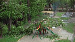 Megtépázta a fákat a tegnapi vihar