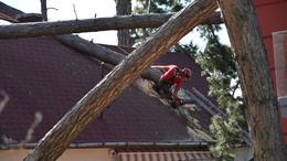 Még mindig a viharkárok felszámolásán dolgoznak a tűzoltók