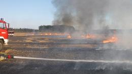Folyamatosan égett a tarló a megyében