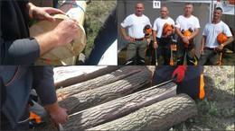 Siófoki tűzoltók a fakitermelő bajnokságon