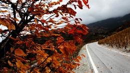 Megérkezik az igazi ősz