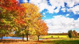 Holnaptól már a barátságosabb arcát mutatja az ősz
