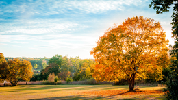 Folytatódik a kellemes őszi idő