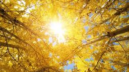 Ma még a napsütésé lesz a főszerep