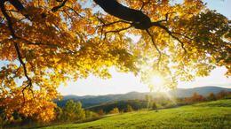 Most a legszebb arcát mutatja az ősz