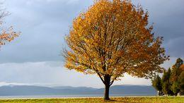 Ma még folytatódik a csendes őszi idő