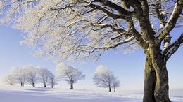 Milyen lesz az idei tél?