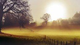 Köd és napsütés párharca