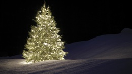 Egyre biztosabb, hogy idén sem lesz fehér a karácsony