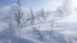 Zord téli idő, többfelé havazással, hófúvással