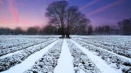 További lehűlésre, igazi téli időre számíthatunk