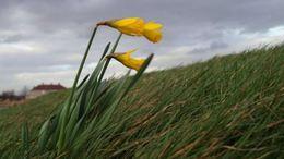 Változékony, kora tavaszi idővel kezdődik a hét