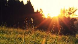 Sok napsütésre, további felmelegedésre számíthatunk