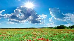Hamisítatlan nyári idő várható a következő napokban