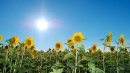 A hétvégén már a napsütésé lesz a főszerep