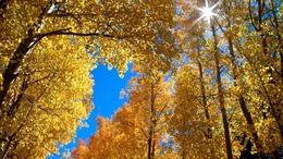 Továbbra is a szebbik arcát mutatja az ősz
