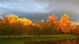További lehűlésre, igazi őszi időre számíthatunk