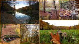 Káprázatos színekkel dolgozik az ősz idén is