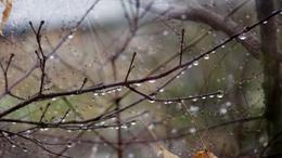 Hamisítatlan késő őszi idő várható