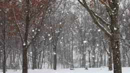 Melegfront okoz többfelé havazást