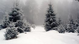 Folytatódik a csapadékos, téli idő