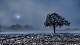 Folytatódik az eseménytelen, késő télies idő