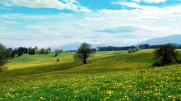Csendes, kora tavaszias idővel folytatódik a hét