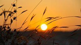 Napos, száraz, igazi strandidő várható a hétvégén