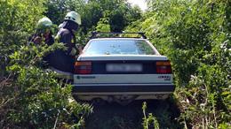Nádasba hajtott egy autó a 7-es főúton