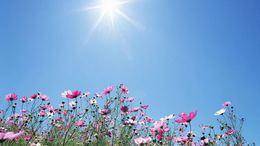Egyelőre marad a kellemes nyári idő