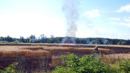 Gabona lángolt Hollád határában