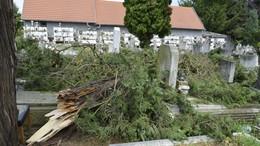 A kaposvári temetőket is megtépázta a vihar