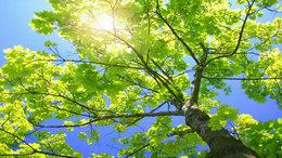 Az átlagosnál melegebb idővel búcsúzik a szeptember