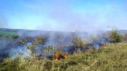 Lángolt a legelő