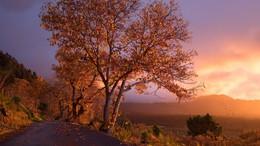 Erős lehűlés kezdődik, beköszönt az igazi ősz