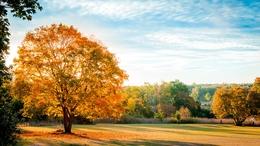 Ismét a szebbik arcát mutatja az ősz