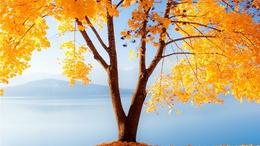Már csak napjai vannak hátra az októberi nyárnak