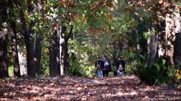Fotókon az ősz szépsége
