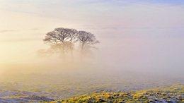 Köd és napsütés párharca Somogyban