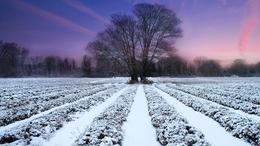 Hidegfront hoz kisebb havazást, havas esőt