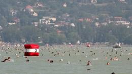 Augusztus elsején Balaton-átúszás!