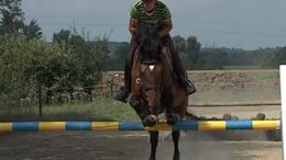 Könnyen vette az akadályokat a taszári lovasklub